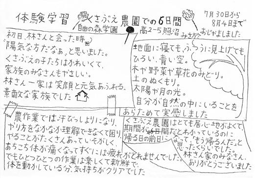 News541